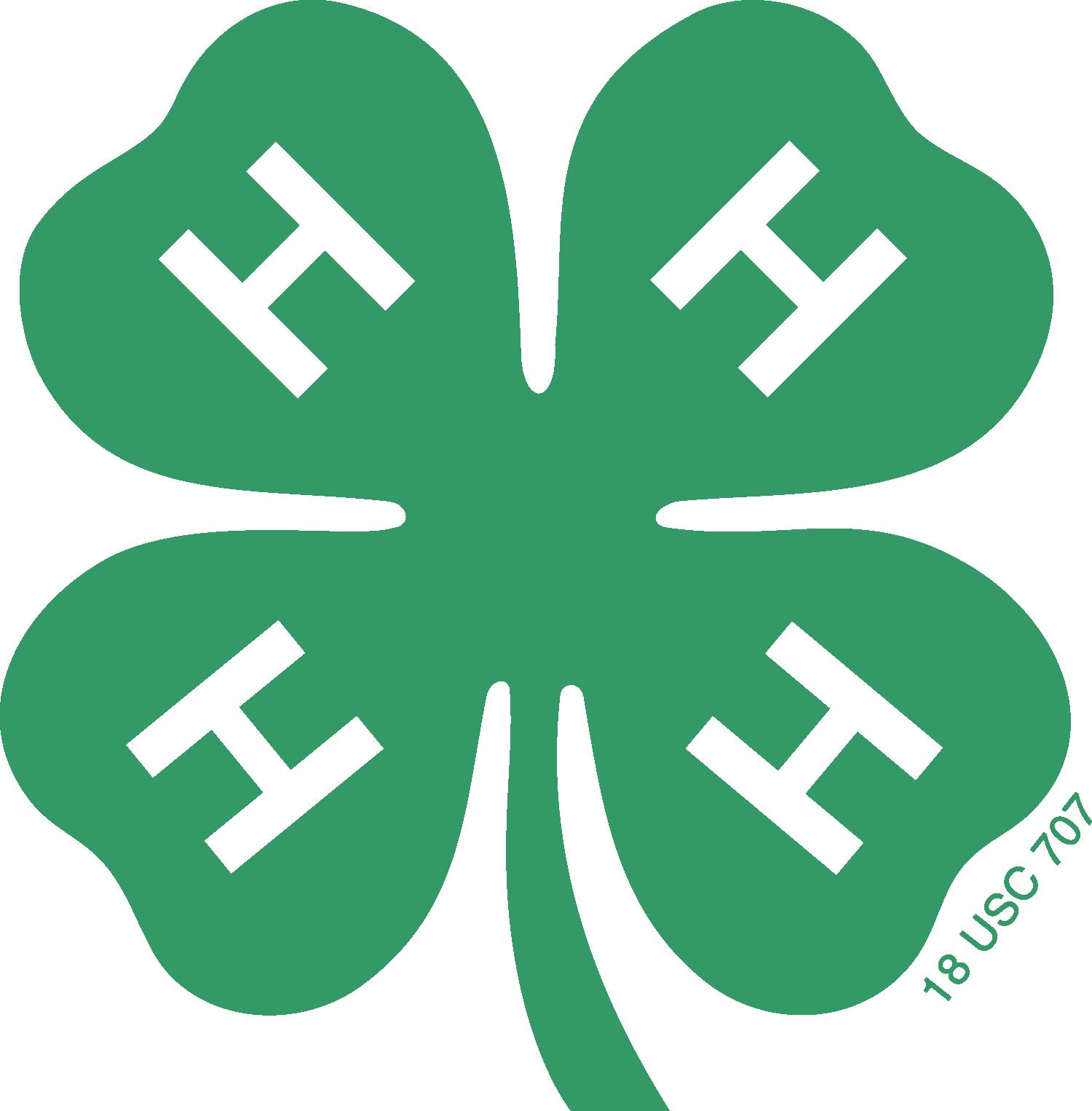 4H Icon